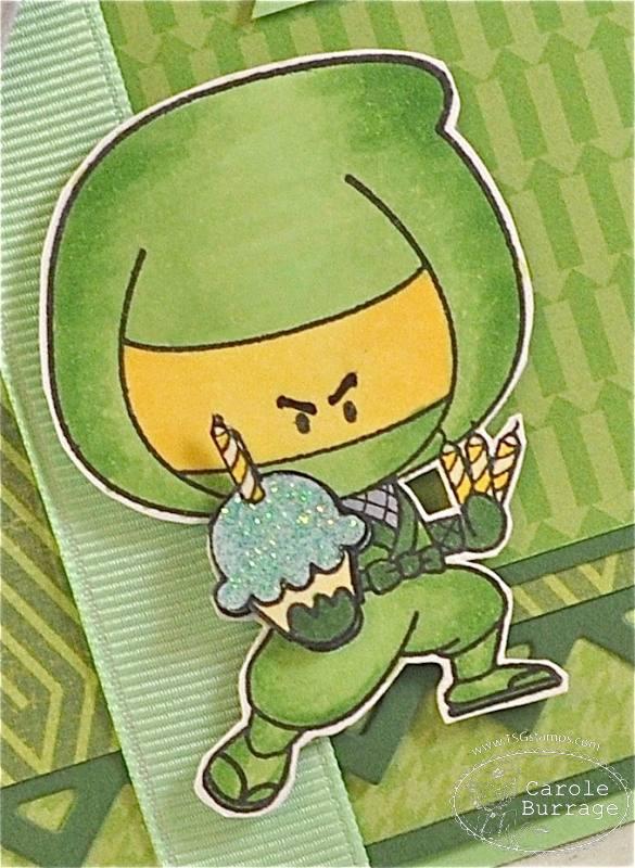 CB Green Ninja detail