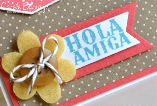 CB Hola Amiga detail