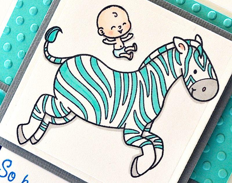CB YNS Baby Zebra close up