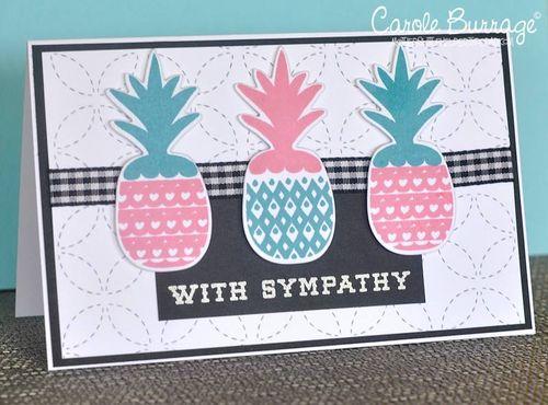CB LID Sympathetic Pineapple side